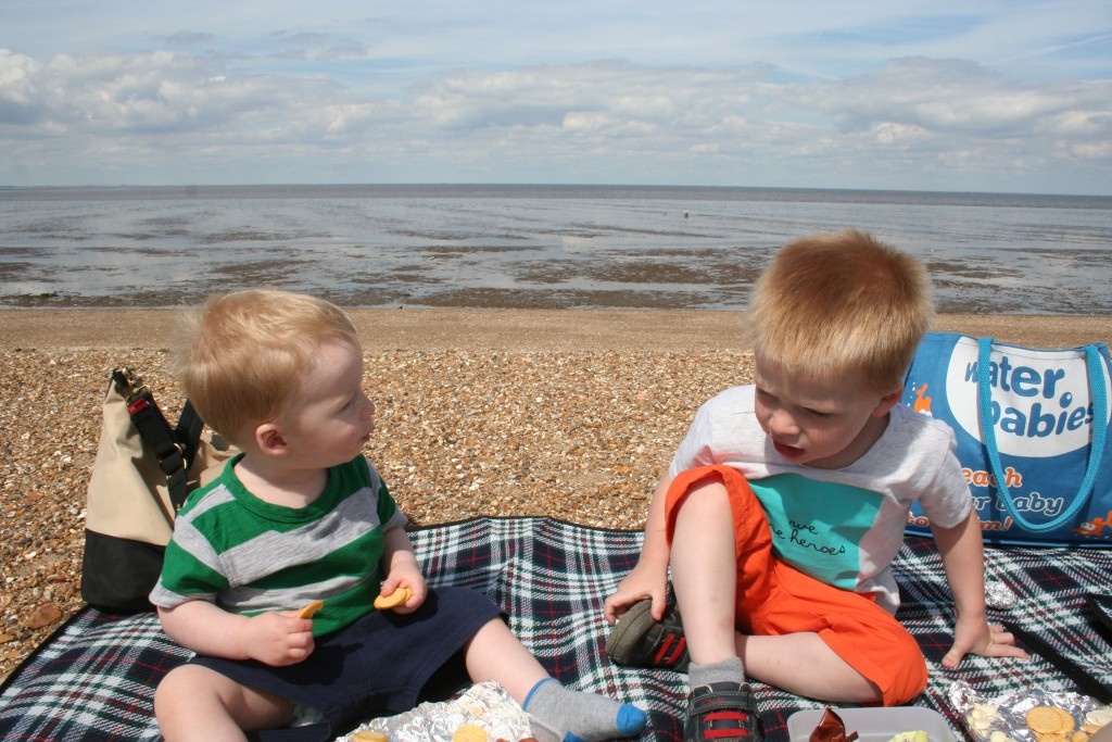 snettisham beach norfolk bimblebox cottages holidays uk break pet friendly cottage north norfolk coast toby and teddy sitting on beach