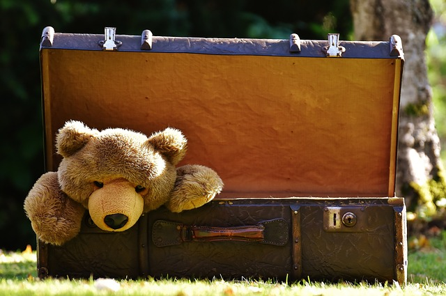 teddy bear luggage moving abroad top tips for taking family overseas to live