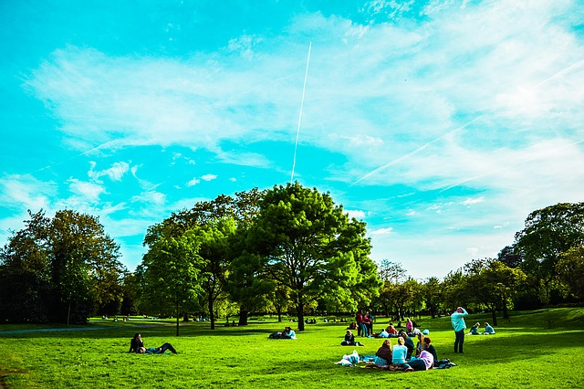 travel things to do in london on a budget with kids visit a park st james santander bike hire picnic